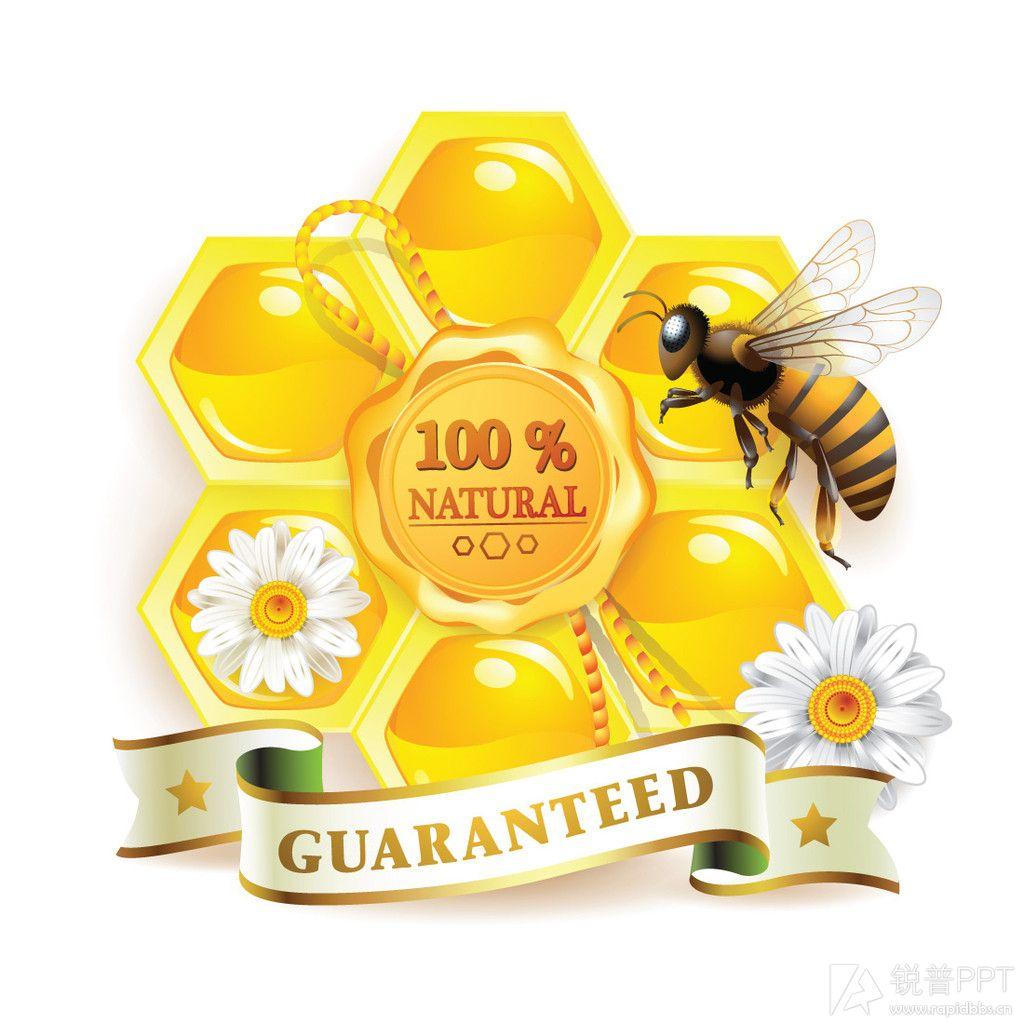 论坛广场 69 ppt素材区 69 图片素材 69 蜜蜂与蜂蜜(25p)